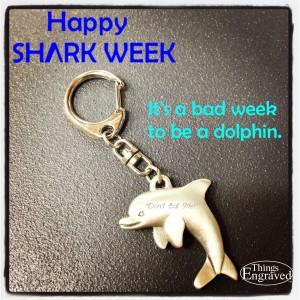 shark week dolphin1